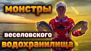ОГРОМНЫКЕ ОКУНИ НЕ ОСТАВЛЯЮТ НАС В ПОКОЕ Июльская рыбалка на Веселовском водохранилище ЧАСТЬ 2