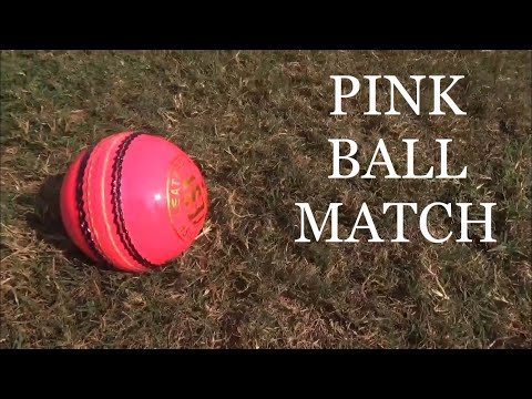 PINK BALL match with Angad Thakur & friends