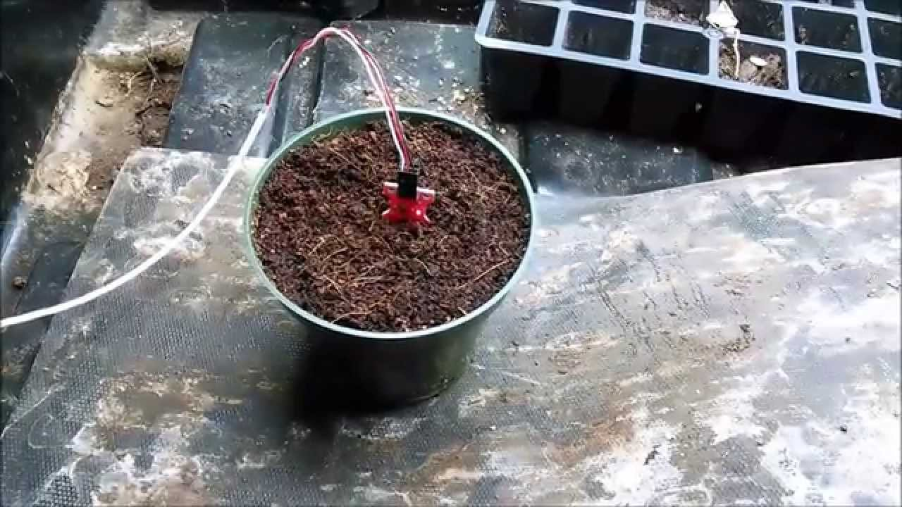 Arduino Based Plant Watering System Using Soil Moisture