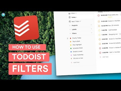 How to Use Todoist Filters | Workshop