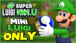 Is it possible to beat New Super Luigi U as Mini-Luigi?