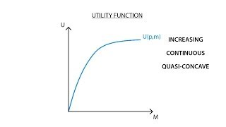 A.1 Utility function | Consumption - Microeconomics