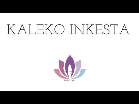 Kaleko Inkesta
