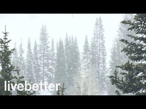 Sonidos Relajantes de Nevada para Dormir - Ruidos de la Naturaleza con Viento Calmante que da Sueño
