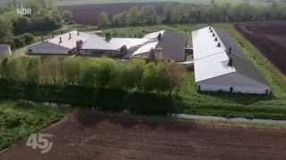45 Min - Armes Schwein | NDR Fernsehen vom 27.05.2014