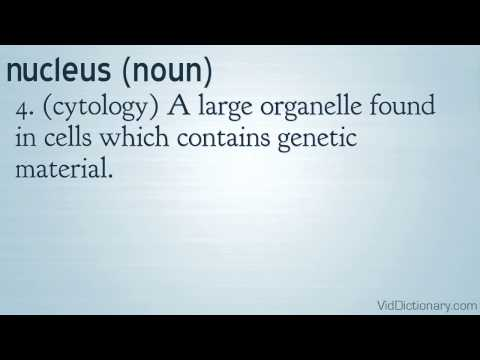 nucleus - definition