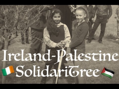 Ireland-Palestine SolidariTree