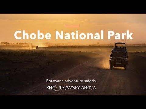 Chobe National Park, Botswana 2018   Ker & Downey Africa