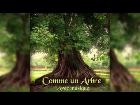 Méditation Guidée - Comme un arbre (avec musique)