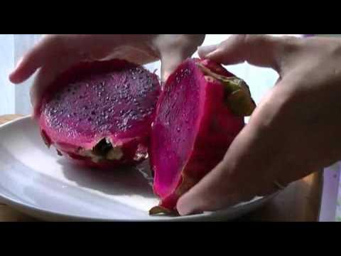 Тропические фрукты Индонезии - Драконовый фрукт (buah naga, gragon fruit) Питахайя