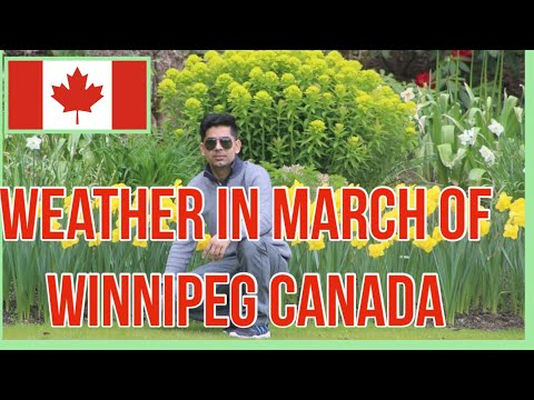 Weather In March Of Winnipeg Manitoba Canada