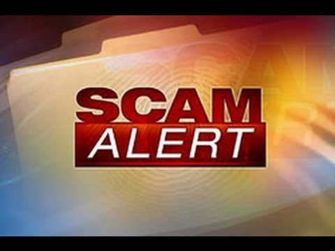 Avoid Scam Vedios About Forex Trading As This One