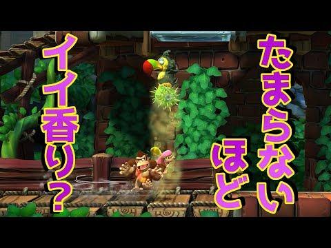 ☆43【5-4 パタパタパネル】ドンキーコングトロピカルフリーズを優しく実況プレイ!