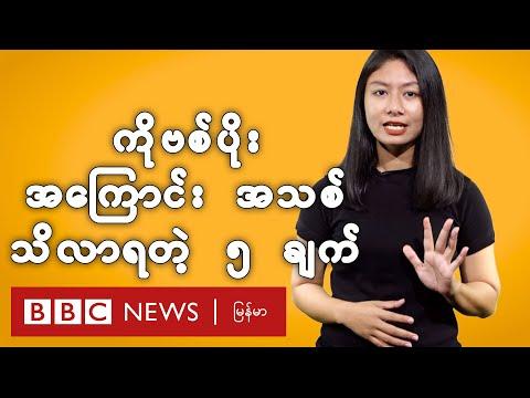 ကိုဗစ်-၁၉ -  လေ့လာချက်တွေ အရ နောက်ထပ် သိလာရတဲ့ အချက် ၅ ချက် - BBC News မြန်မာ