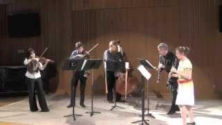 Turceasca - Garrick  Zoeter and AnnaMarie Ignarro - Clarinet - Taraf de Haidouks