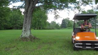 Vintage Antique Harley Davidson Golf Cart
