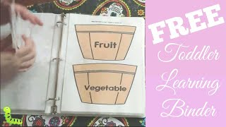 FREE Toddler Learning Binder Preschool At Home