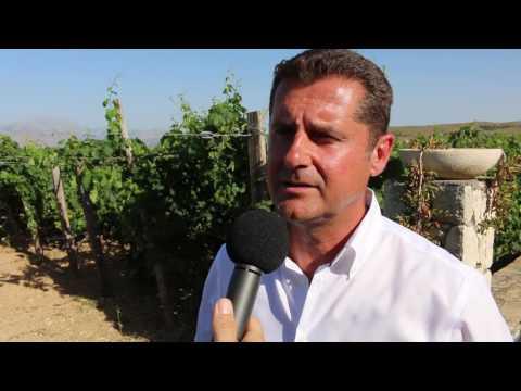 TUI Talk with Michael Mavropoulos, Regional Director East Mediterranean