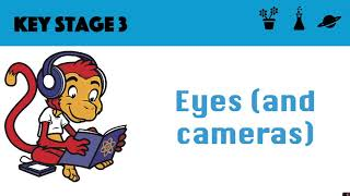 The eye (and pinhole camera)