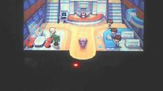 Pokemon Black - C-Gear, Wi-Fi, Pal Pad, Freind Code, Route 3 (Part 9)