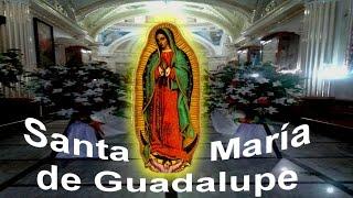 Santa Apolonia Teacalco Peregrinación Guadalupana