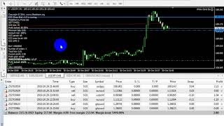 White Coral Ea _Live trading _ three days live trading _part three