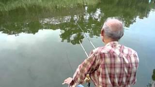 池釣 鯽魚 和哥