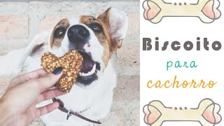 receita de biscoito para cachorro por isa ribeiro na nossa vida