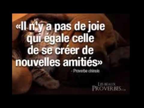 The Prophecy : l'amour compliqué