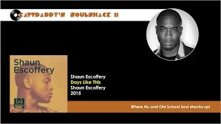 Shaun Escoffery- Space Rider (2015)
