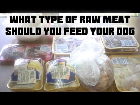 What Type Of Raw Meat Should You Feed Your Dog? BARF Diet