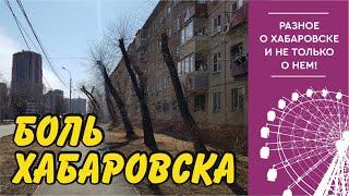 Как нас лишают красоты и чистого воздуха. Хабаровск