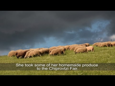 The Secret Services of Nature | WWF-Bulgaria