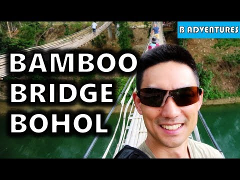 Bohol: Butterfly's & Twin Bamboo Bridge, Philippines S3, Vlog #85