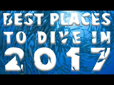 Best Places to Dive in 2017