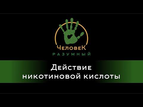 ГЛАВА 9. ПОРОШКИ -