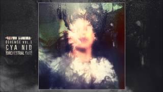 Paydo Komma - CYA Nid (Orchestral Dub)