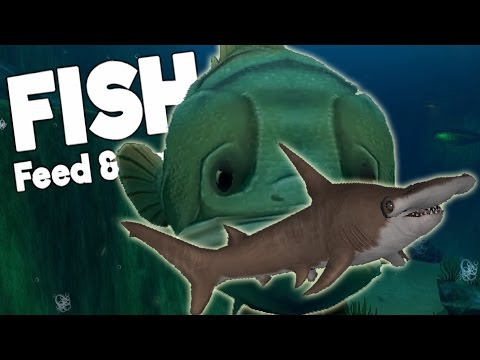 HUGE SHARK EATING GOLIATH FISH - Feed and Grow Fish New Update Gameplay Highlights and Funny Moments