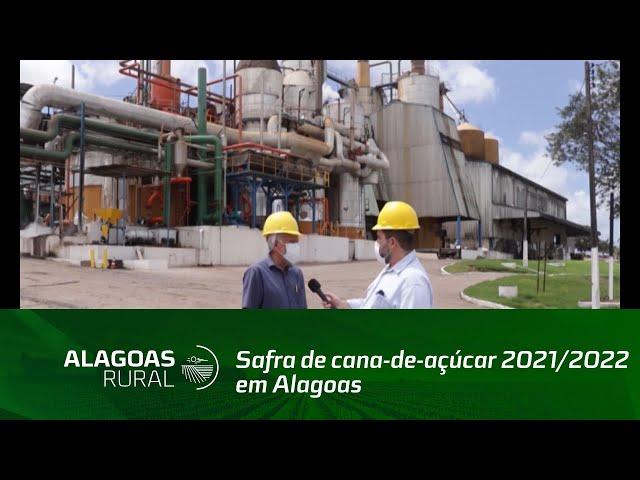 Cooperativa Pindorama foi a primeira a iniciar safra de cana-de-açúcar 2021/2022 em Alagoas
