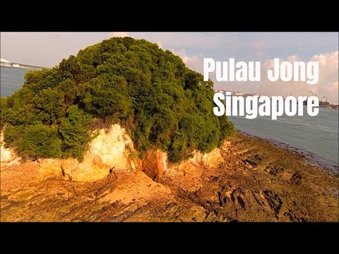 Wildshores of Singapore: Pulau Jong