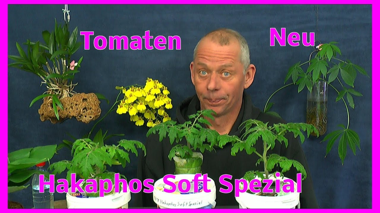 tomaten neuer d nger f r die hydroponic ikea v xer hakaphos soft spezial youtube. Black Bedroom Furniture Sets. Home Design Ideas
