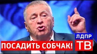 ПОЗОР!!! Жириновский о СОБЧАК! ЛЬЁТ ПРАВДУ! СМОТРИМ!