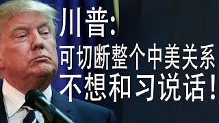 """川普:可切断整个中美关系!不想和习近平说话!张召忠怼胡锡进?""""习近平""""遭封号?(老北京茶館/第308集/2020/05/15)"""