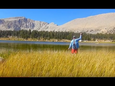 BACKCOUNTRY FLY FISHING THE HIGH SIERRA MOUNTIANS-SOLID GOLD With Chris Walklet