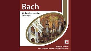No. 1, Jauchzet, frohlocket, auf, preiset die Tage (Coro)