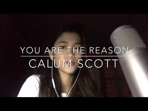You Are The Reason - Calum Scott (cover)