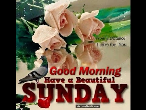Happy Good Morning Sunday Wishes Smsquotesgreetingsmessages