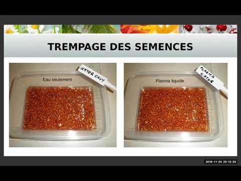 2018 11 24 PM Public Teaching in French - Enseignements publics en français