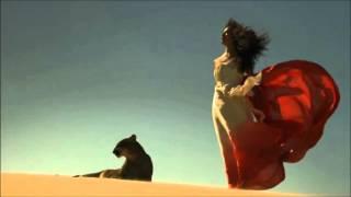 Video Melodie Araba de Dragoste Superba - 2016 download MP3, 3GP, MP4, WEBM, AVI, FLV Agustus 2018