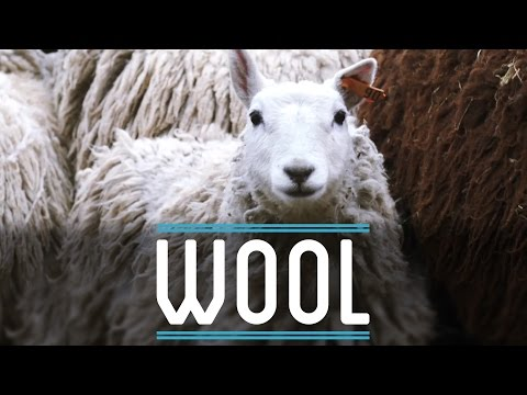 Wool | How To Make Everything: Suit (3/10)